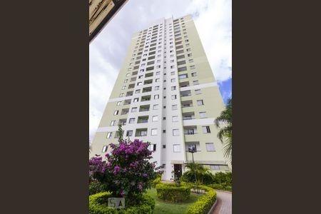 Apartamento De 2doms - Condomínio Bela Vista: Freguesia Do Ó