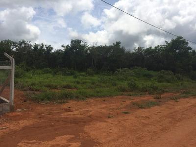 Chácara De 2500m2 Condomínio Buriti Da Cascata Bom Despacho