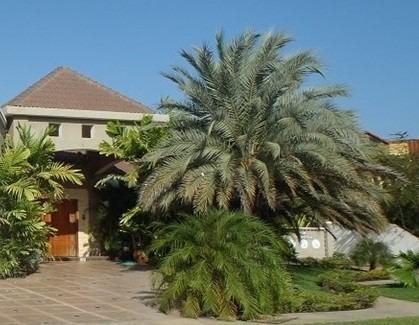 Las Villas Lecherias Se Vendeo Alquila Rent Or Sell