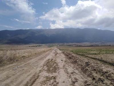 En Venta 9 Hectáreas De Terreno En La Sierra De Arteaga, En El Cañón De San António De Las Alazanas