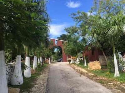 Comercial Rancho En Merida Yucatán