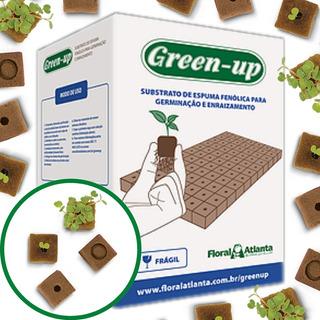 Caja Espuma Fenolica - Hidroponia - Kit Green Up Germinacion