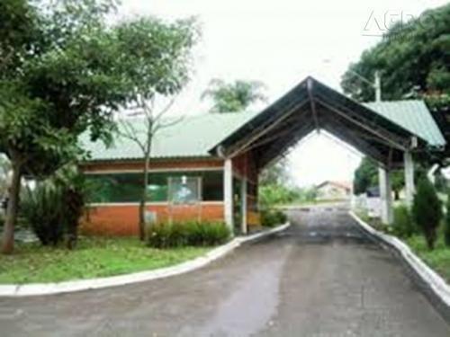 Terreno Residencial À Venda, Centro, Piratininga - Te0305. - Te0305