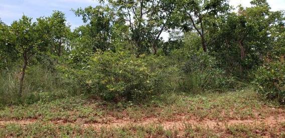 Fazenda Plana A Venda Em Brasília De Minas - Mg 482 Hectares. - 7704