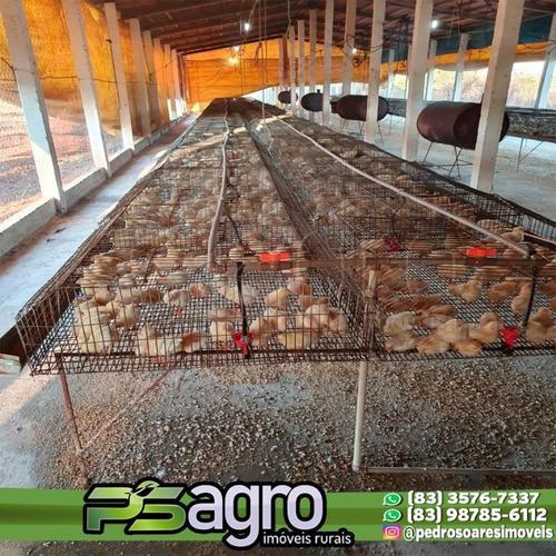 Imagem 1 de 2 de ( Investidor ) Sítio À Venda, 70000 M² Por R$ 800.000 - Sumé/pb - Si0003
