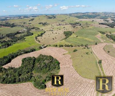 Fazenda Para Venda Em Laranjeiras Do Sul, Rural - _2-1026534