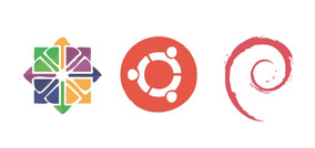 Servidor Linux, Para Sistemas Web Empresárial