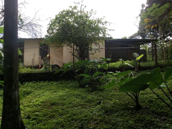 Casa Y Finca En Venta En Chilibre Centro Negociable