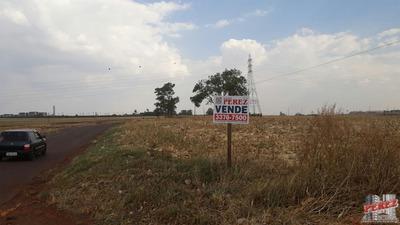 Chácaras/sítios/fazendas Para Venda - 13650.3266