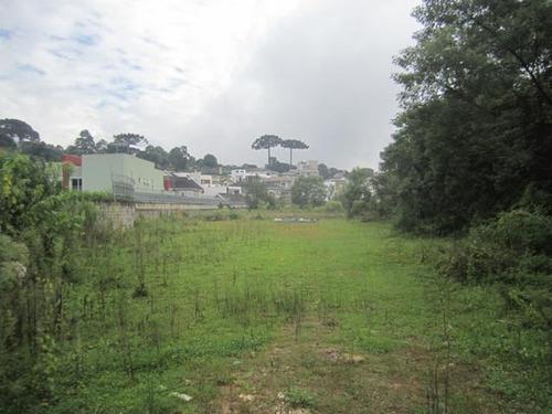 Imagem 1 de 19 de Área À Venda, 5053 M² Por R$ 1.350.000,00 - Tingui - Curitiba/pr - Ar0001