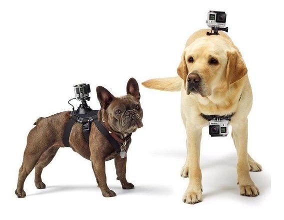 Cinturão Canino Para Câmera Gopro, Fetch - Adogm-001