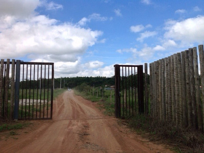 Chácara Para Comprar No Zona Rural Em Carmo Do Cajuru/mg - 992
