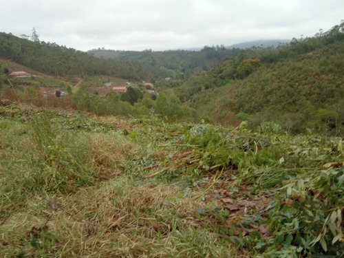 Imagem 1 de 14 de B20- Lotes Com Vista Unica Em Igarata Áreas Verdes