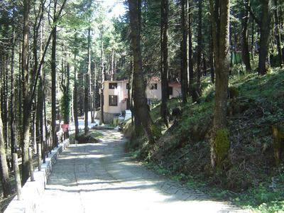 Hermosa Residencia En El Bosque Fraccionamiento Privado