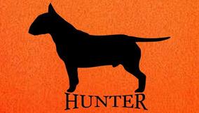 Tapete Capacho Hunter 70x40cm Laranja