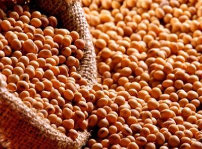 Fazenda Em Pindorama - To, Dupla Aptidão - 172