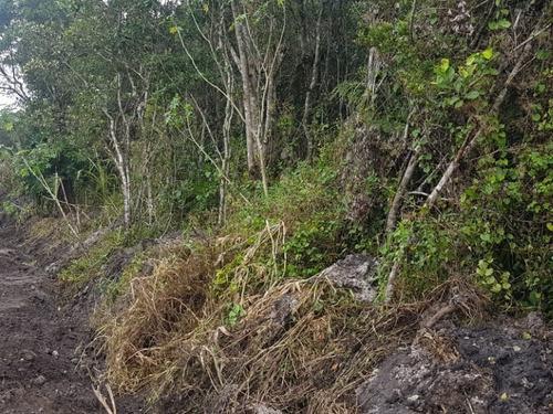 Imagem 1 de 9 de Terreno Na Praia Com 231 M², Em Itanhaém/sp Ter042-pc