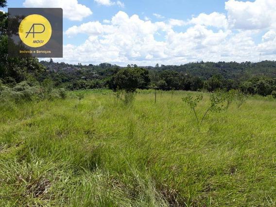 Terreno À Venda, 30000 M² Por R$ 1.200.000 - Vila São Sebastião - Ferraz De Vasconcelos/sp - Te0040