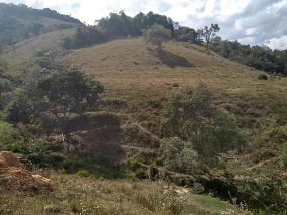 Sítio Em São Tomé Das Letras, Terra Das Cachoeiras, Com 18 Hectares, Bom De Água . - 308