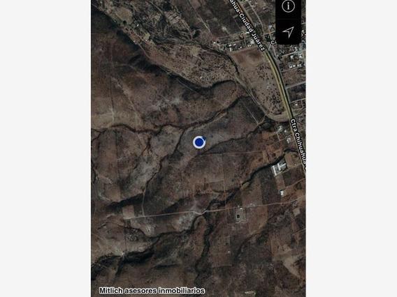 Rancho En Venta Venta $19,800,000 27hs Salida Cd. Juarez Km25. El Sauz.