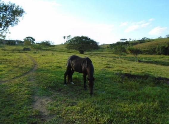 Fazenda À Venda, 968000 M² Por R$ 1.300.000 - Centro - Registro/sp - Fa0167