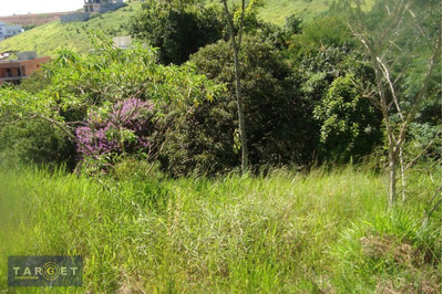 Terreno Residencial À Venda, Jardim Maria Tereza, Cotia. - Te0353