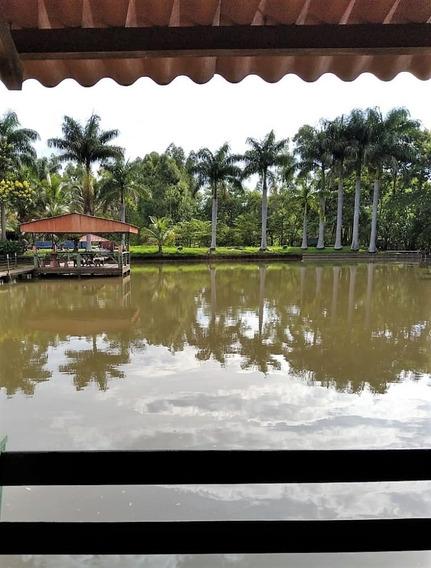 Fazenda Londrina | 41,0 Alqueires (99,22 Ha) | Planta 36 Alq