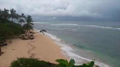 Terreno Con Acceso A Playa Caleton
