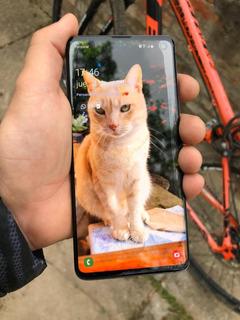 Celular Samsung S10 128 Gb Color Negro Vendo O Permuto