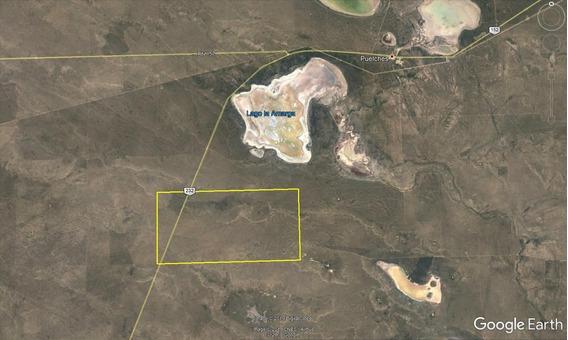 Campos En Venta - 20.008 Ha En Puelches, Departamento Cura Co, Provincia De La Pampa - Campo Para Producción Ganadera