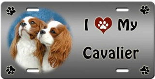 Canine Designs I Love My Cavalier King Charles Spaniel Matrí