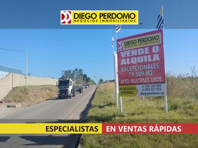 Excelente Posibilidad Sobre Camino Bajo De La Petisa.