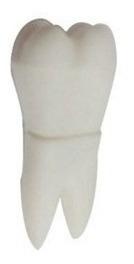 32 Gb Pendrive Pen Drive Usb Formato Dente Dentista 1 Unid