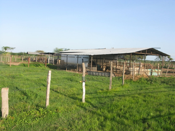 Bella Finca Multi Propósito En Guarico 428ht Disponibles