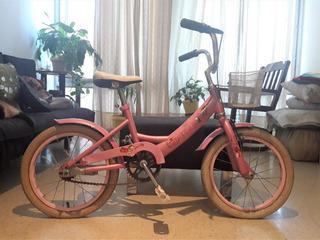 Bicicleta Nena Gribom Modelo Gruppi Rodado 15