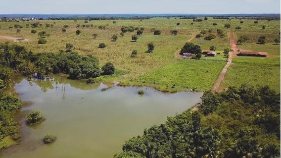 Fazenda A Venda Em Cariri Do Tocantins - To (dupla Aptidão) - 891
