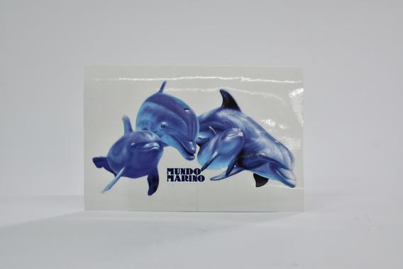 Calco Cadena De Delfines Exterior Mundo Marino