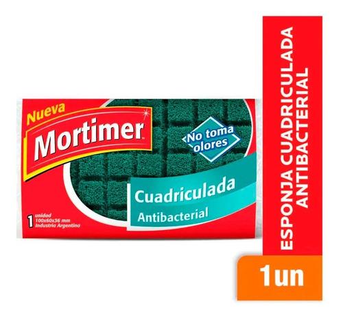 Esponja Cuadriculada Antibacterial Mortimer No Toma Olores