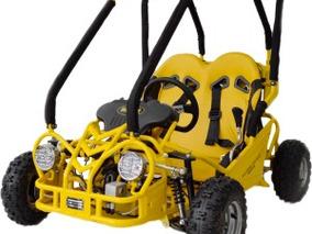 Gaiola Infantil 110cc Partida Eletrica Cambio Automatico