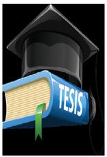 Asesor De Tesis Y De Aprendizaje De Inglés