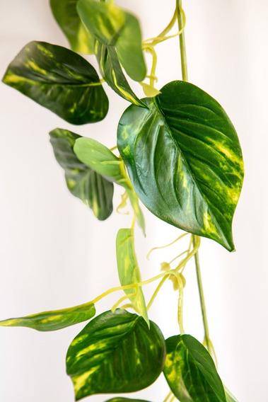 Planta Colgante Hiedra, Plantas Artificiales