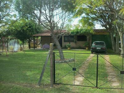 Casa Alquiler Parque Del Plata 1500 X Dia099337039/0993475