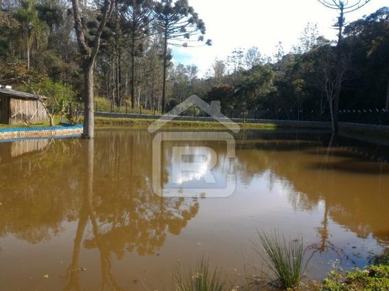 Chácara Com Lago Em São Lourenço Da Serra - 228 - 32954881
