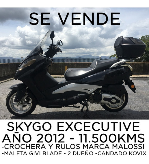 Skygo Executive 2012 Moto 250cc