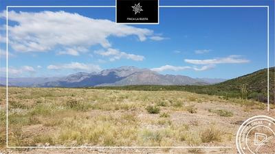 La Rioja Finca 300has - Apta Viñedos Y Nogales