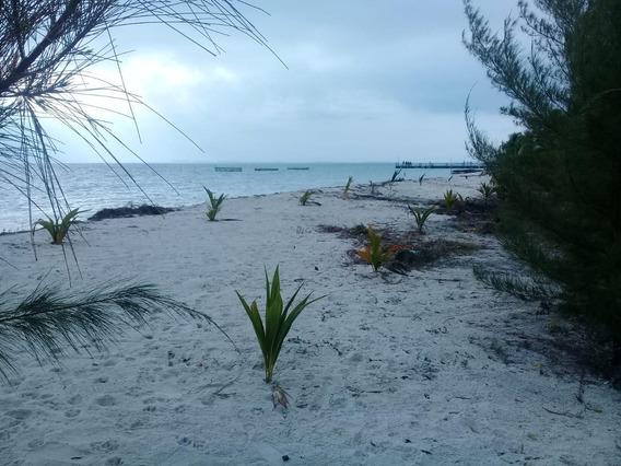 Terreno Hotelero En Isla Mujeres Con Frente De Playa