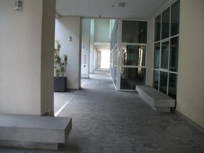 Sala Comercial Oportunidade São Caetano Do Sul - Sp - Centro - A0184_aluguel