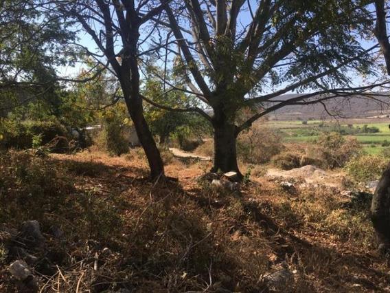 Terreno En Venta Ex Hacienda Coahuixtla