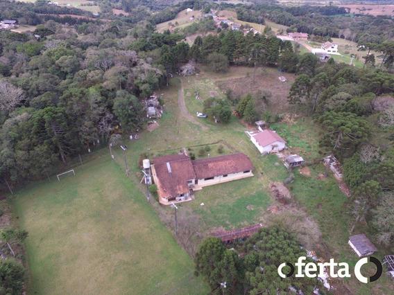 Chacara Com Casa - Palmital - Ref: 105 - V-105
