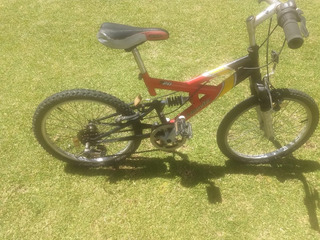 Bicicleta Mountain Bike Rod.20 Con Cambio/amortiguador